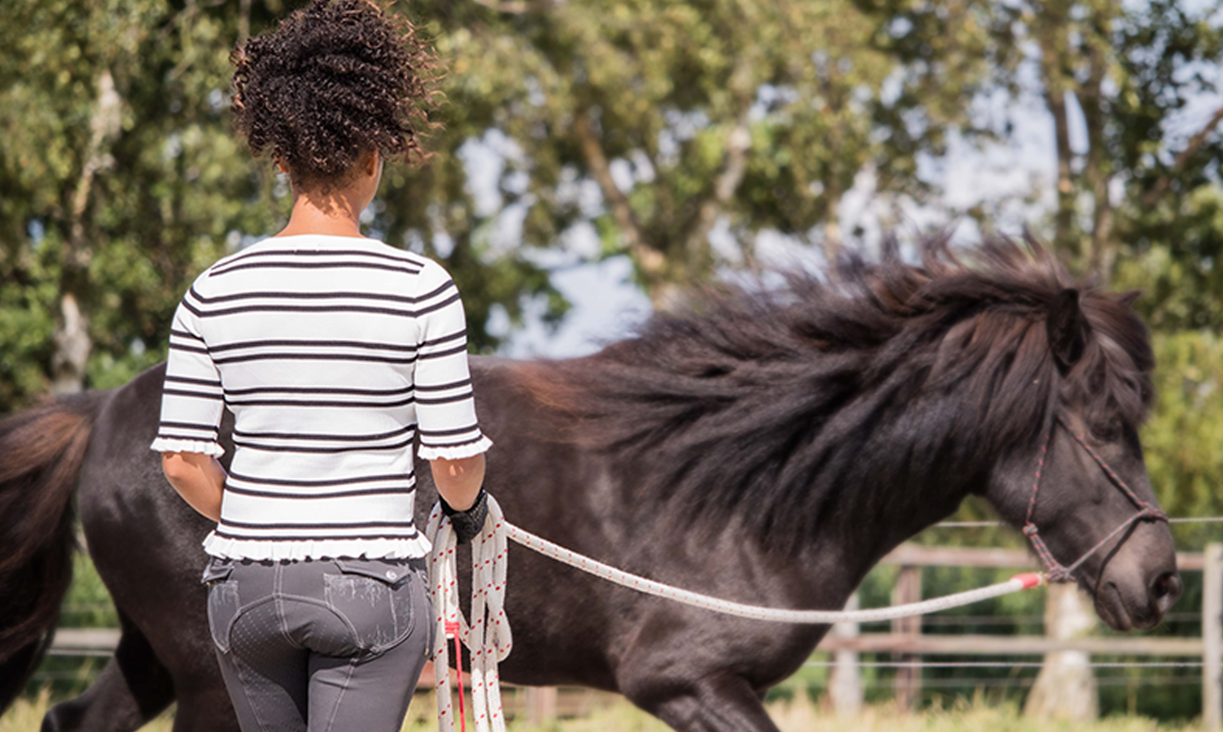 Horseworks – Eileen Sowah – Because working together works!